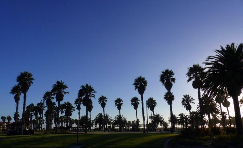 Back in Ventura.